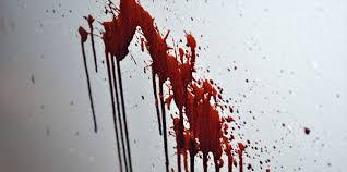 Blood Spatter Analysis picture 1